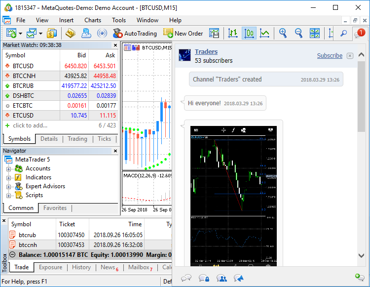 Metatrader 5 Overview-terminal_2.png