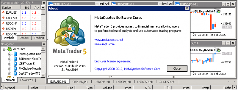 Metatrader 5 Overview-2005.png