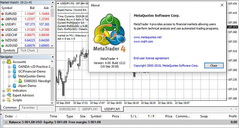 MetaTrader 4 Platform Overview-1212.png