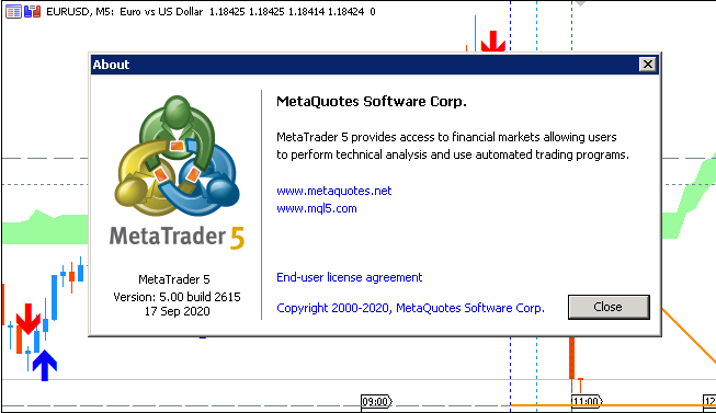 Metatrader 5 Overview-2615.png
