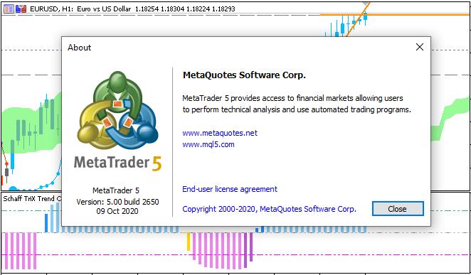 Metatrader 5 Overview-2650en.png